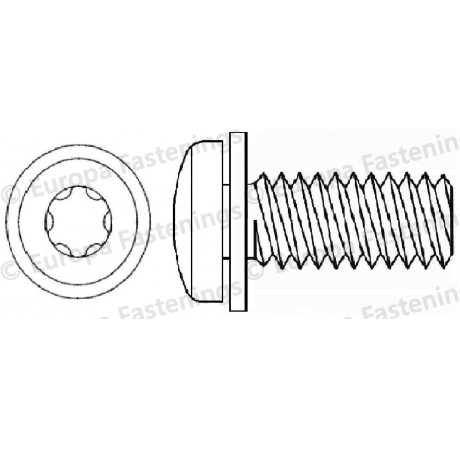 Sems Screw Pan (Din 7985) 6-Lobe c/w Plain (Din 6902A) Washer