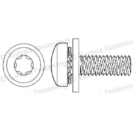 Sems Screw Pan (Din 7985) 6-Lobe c/w Internal Shakeproof & Plain (Din 6902A) Washers
